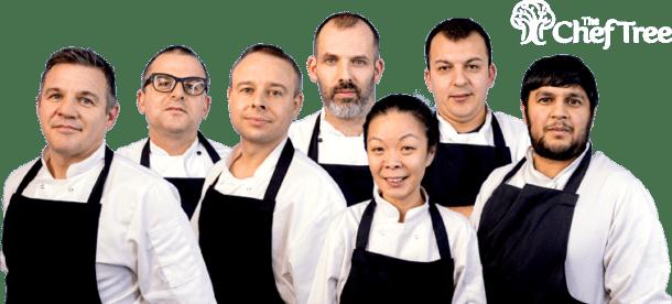 Bristol Chef Agency